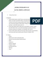 trauma-medula-spinalis.docx