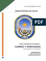CARNES Y DERIVADOS.docx