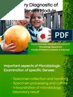 Laboratory Diagnostic of Special Senses Module 2013.Modul Indera.ppt