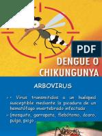 Dengue Pres.