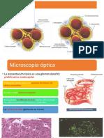 Patología.pptx