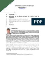 fc_guadalajara.pdf