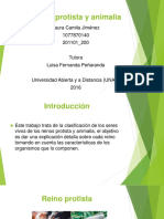 Diapositivas Reino Protista y Animalia
