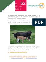 Ficha Técnica Nutrición y Alimentación de Ganado Lechero