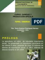 Varroa - T.rodriguezH