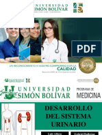 Sistema Urinario Embriologia