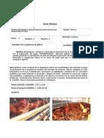 Ficha Tecnica Gallinas Ponedoras