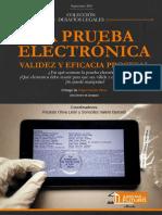 Prueba Pericial Electronica Validez Legal gran-final.pdf