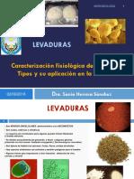 04-LEVADURAS- Clase 4.pdf