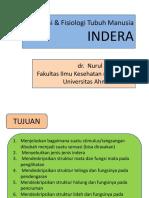 anatomi & fisiologi indera