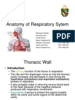 Anatomy of Respiratory System-2