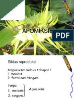 APOMIKSIS