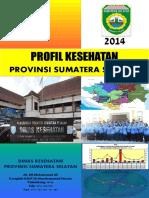 06_Sumatera_Selatan_2014.pdf