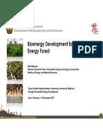 2. Bioenergy Development Based on Energy Forest-Rev 15 Nov 17