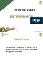 re82113_vm5_ppt_determinante_a.pptx
