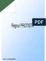 Regnul Protista