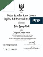 gillian golosky - oss diploma