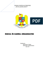 Riscul În Cadrul Organizaţiei