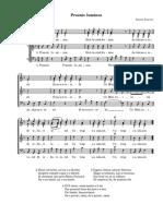 praznic_luminos.pdf