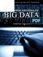 The Promise and Peril of Big Data