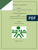 Informe No 1 Descripción Del Mercado 1