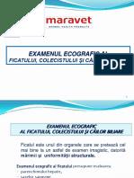 ecografia ficatului.pdf
