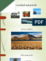 La Diversidad Natural de Chile Clase Ppt
