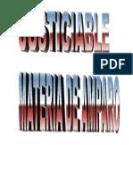 Amparo-Manual-Del-Justiciable.pdf