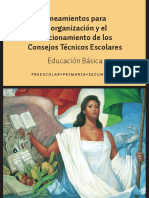 LineamientosCTE.pdf