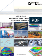 Geological & Petroleum Geoscientific Course Catalogue- Dimension Strata Brunei