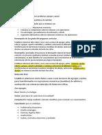 PRECISION DE DESEMPEÑOS.docx