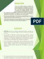 ACALCULIA - DIAPOSITIVA.pptx