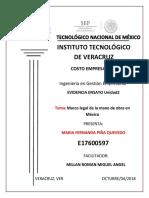 PIÑA-MARIAFERNANDA-#2 unidad2.pptx