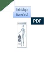 Clase+embriología+craneofacial+2018a