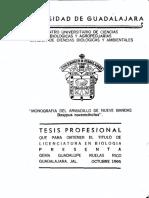 ARMADILLO GIGANTESSSS.pdf