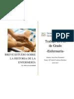 Historia de La Enfermeria Espanola Desde El Periodo Pons Fernandez Sara