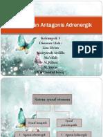agonis & antagonis adrenergik