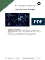Activitat UNITAT 2.COMO SE CONECTAN LAS NEURONAS.doc