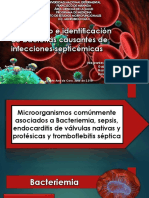 Aislamiento e identificación de bacterias causantes de infecciones septicémicas