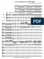 Telemann -2 Chalumeau, 2vl vla bc Concertod.pdf