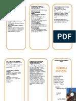 TRIPTICO-medula-espinal.doc