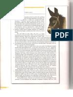 Scanare_20181115 (69).pdf