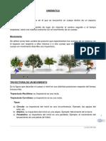 CINEMATICA 2.docx