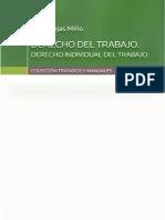 Derecho individual de Trabajo. IRENE ROJAS MIÑO.pdf