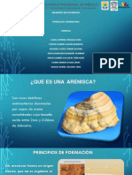 Descripcion de Sedimentarias Vico