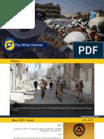 2018_ppt White Helmets