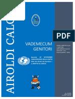 Vademecum -Airoldi - 2018-11-20 Speciale Giornata Onu
