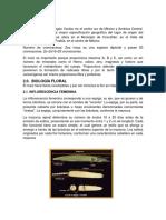 Exposicion Tema Biologia Floral y Sistema de Reproduccion Del Maiz
