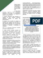 Glomerulopatias - patologia (resumo)