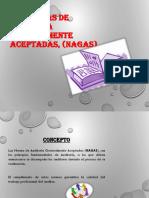 Normativas de La Aud. Sistemas . (3)Exp0miriam
